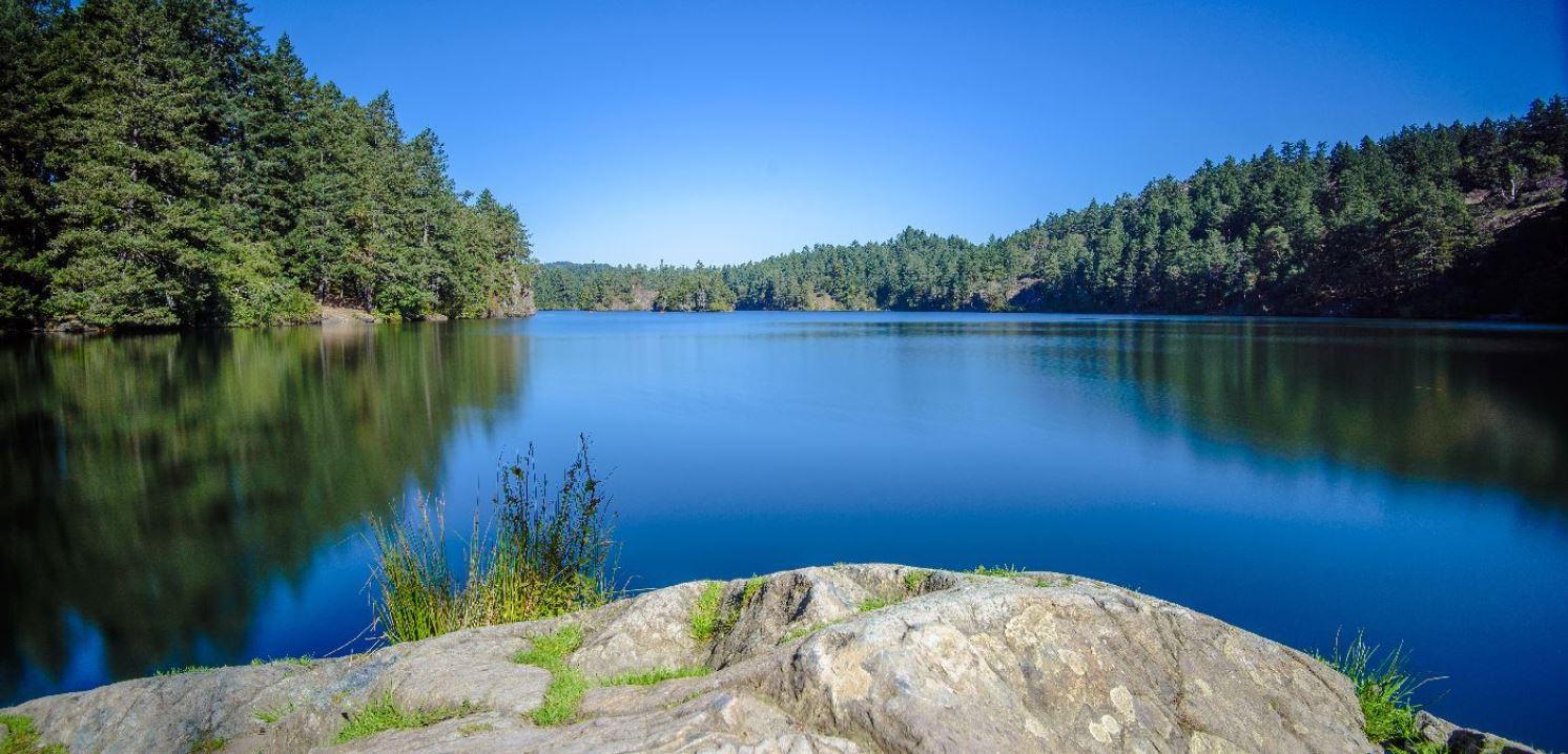 Regionaal park Thetis Lake